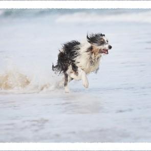 Bessie Running